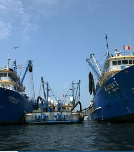 Copeinca anchovy fishing vessels