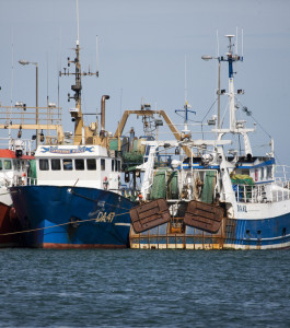 Fishing vessels in Howth, Ireland. Photo: William Murphy