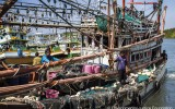 EJF: Overfishing, piracy, slavery all linked in Thailand