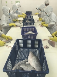 Exporter GST Group's finfish hatchery-nursery farm and processing plant in Malaysia