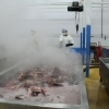 Giant squid processing in Peru