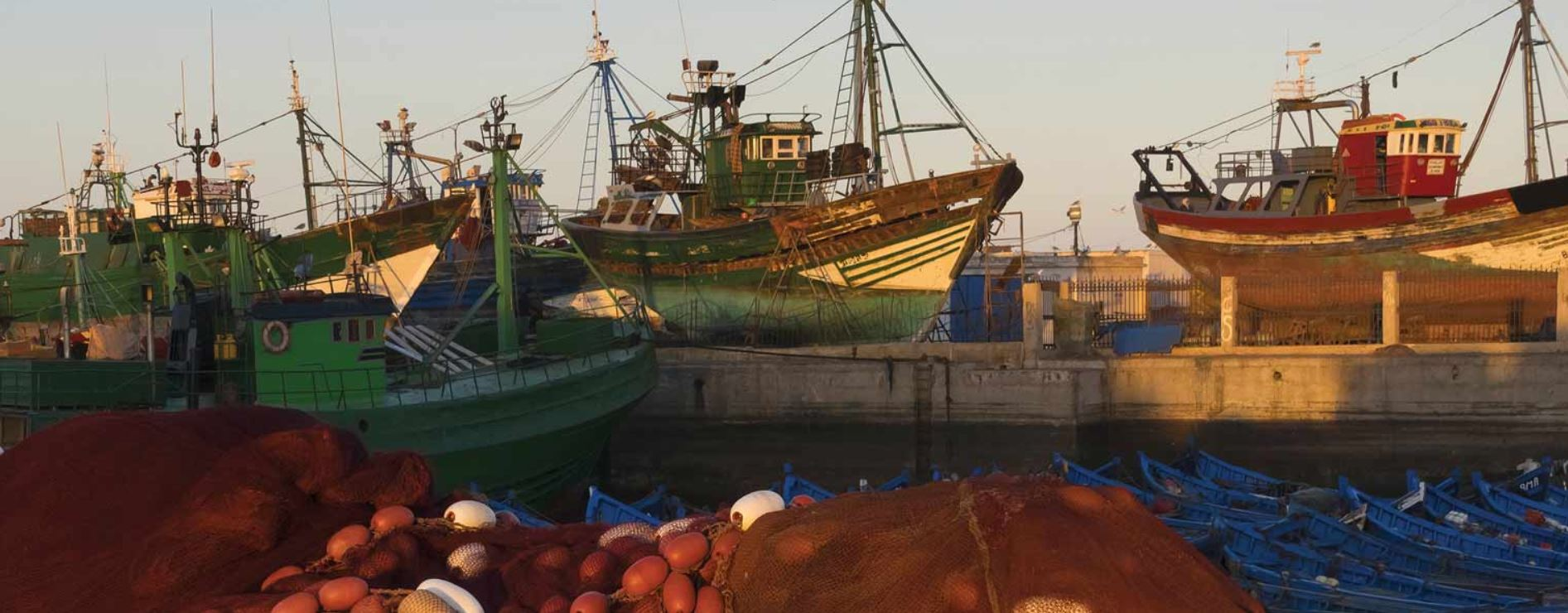 Pew lobbies WTO to get behind fishing subsidy reductions