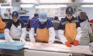 Russian Fishery Company pollock
