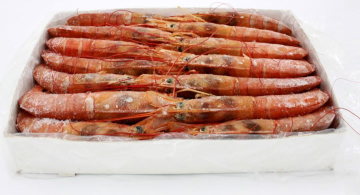 Newsan is Argentina's top-ranked seafood exporter as H1 red