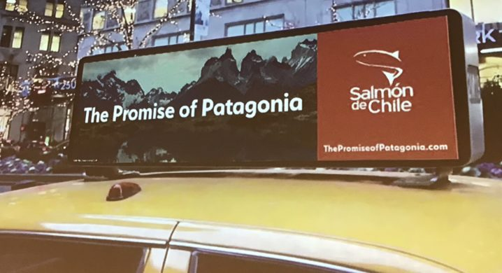 Chilean salmon firms to launch US push promoting Patagonia